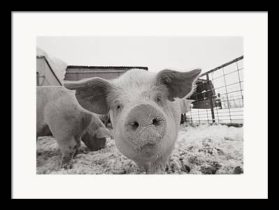 Farmers And Farming Framed Prints