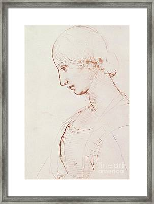 Portrait Of A Young Woman  Framed Print by Raphael