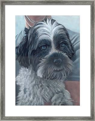 Portrait Of Charley Framed Print
