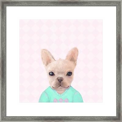 Portrait Of French Bull Dog Framed Print