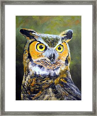 Portrait Of Great Horned Owl Framed Print by Dennis Clark