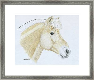 Portrait Of Levi Framed Print by Laurie With