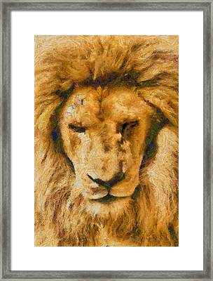 Framed Print featuring the photograph Portrait Of Lion by Scott Carruthers