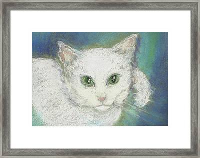 Portrait Of Misty Framed Print by Denise Fulmer