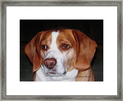Portrait Of Rusty Framed Print