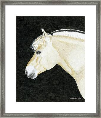 Portrait Of Skylar, Fjord Mare Framed Print by Laurie With