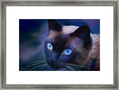 Portrait Of Sulley Framed Print