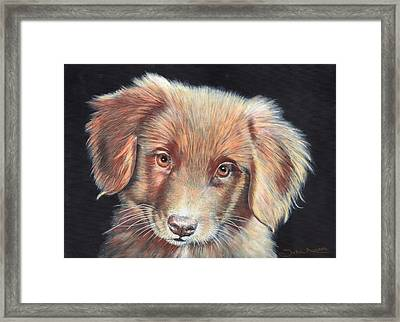 Portrait Of Toby Framed Print