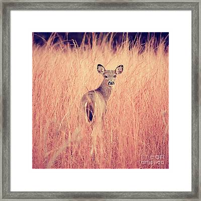 Portrait Session Framed Print