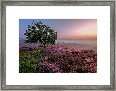 Posbank Framed Print