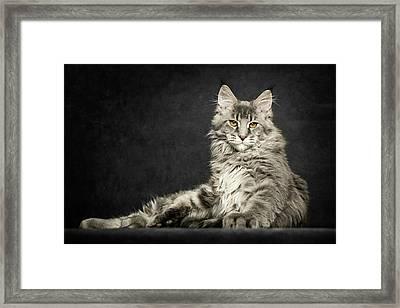 Pose Framed Print
