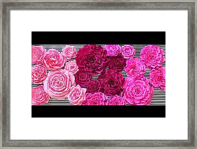 Posh Pink  Framed Print by The Painted Petaler