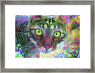 Posie The Tabby Cat Framed Print