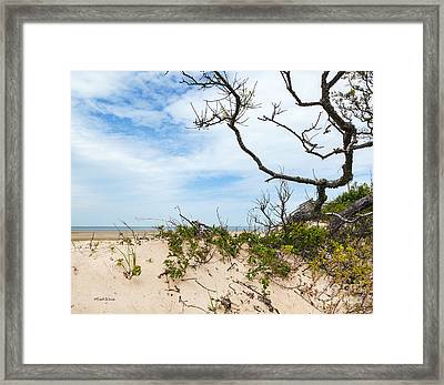 Positive Outlook Framed Print by Michelle Wiarda