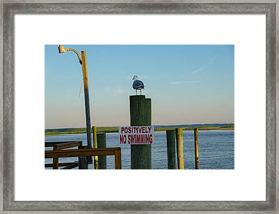 Positively No Swimming - Jersey Shore Framed Print by Bill Cannon