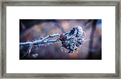Possibility Framed Print by Matti Ollikainen