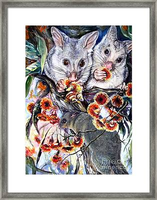 Possum Family Framed Print