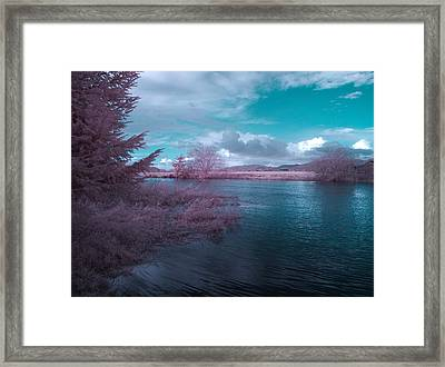 Framed Print featuring the digital art Post Flood Surreal by Chriss Pagani