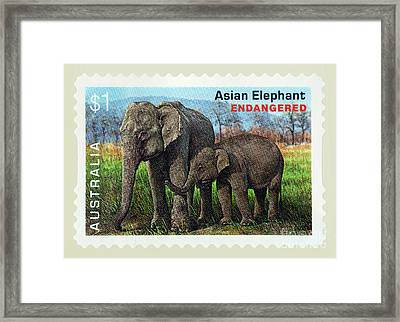 Postage Stamp - Asian Elephant By Kaye Menner Framed Print
