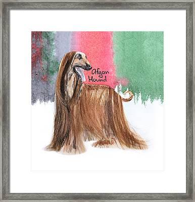 Watercolor Postcard Dogs Afgan Hound Framed Print by Maryna Lievshyna