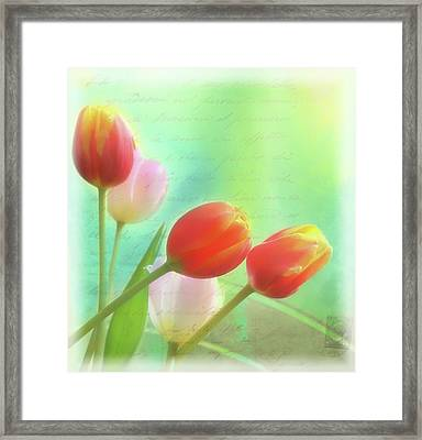 Postcards From The Edge Framed Print