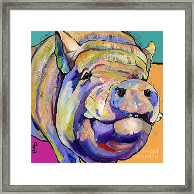 Potbelly Framed Print by Pat Saunders-White
