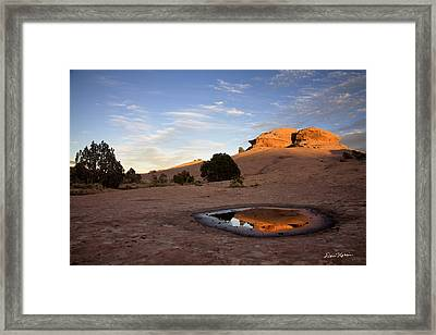 Pothole Reflection On Slickrock Trail Framed Print