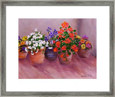 Pots Of Flowers Framed Print by Jamie Frier
