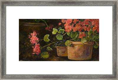 Pots Of Geraniums Framed Print by Jimmie Trotter