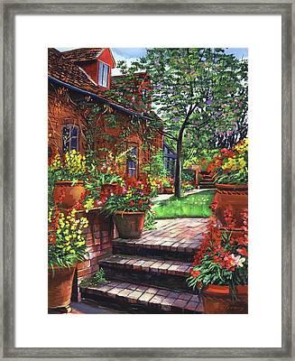 Pots Of Wallflowers Framed Print by David Lloyd Glover