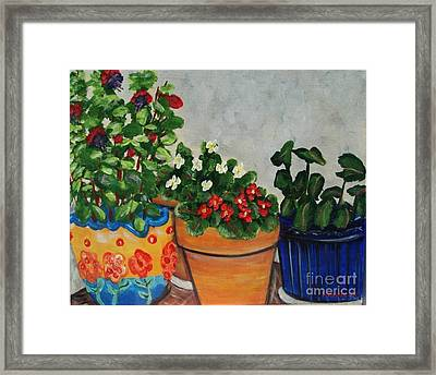 Pots Showing Off Framed Print