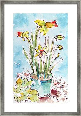 Framed Print featuring the painting Potted Daffodils by Pat Katz