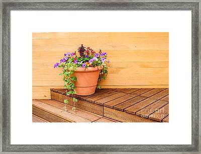 Potted Flowers Still Life Framed Print