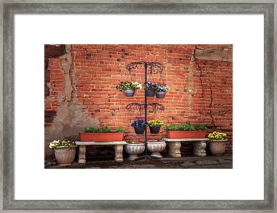 Framed Print featuring the photograph Potted Plants And A Brick Wall by James Eddy