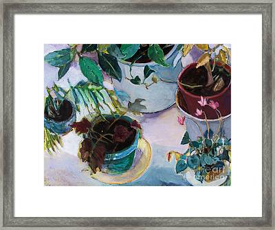 Framed Print featuring the painting Potted Plants by Diane Ursin