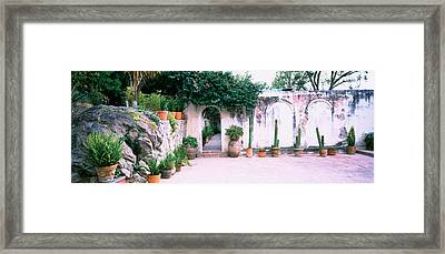 Potted Plants In Courtyard Of A House Framed Print