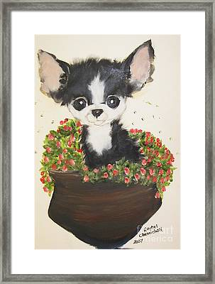 Potted Pup Framed Print by Rachel Carmichael