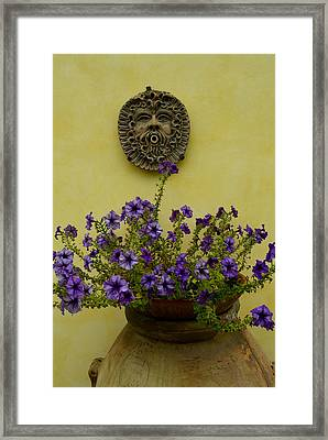 Potted Purple Petunias On A Wooden Framed Print by Todd Gipstein