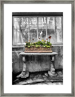 Potted Framed Print by Russell Styles