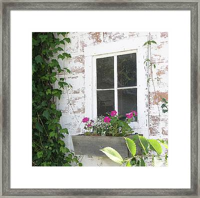 Potting Shed Window Framed Print by Janis Beauchamp