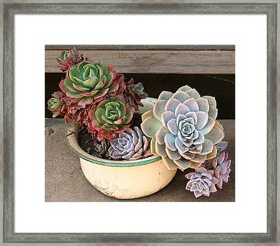Potty For Plants Framed Print by Lene Pieters