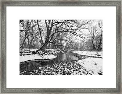 Poudre Black And White Framed Print by James Steele