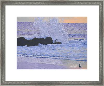Pounding Surf Framed Print by Eric Barich