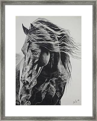 Power Of Horse Framed Print