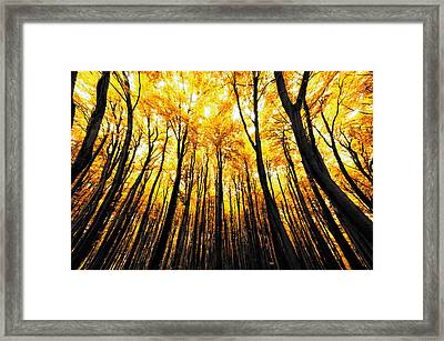 Power Of The Sun Framed Print