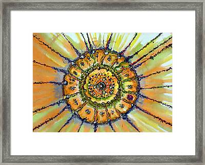 Power Shield Framed Print