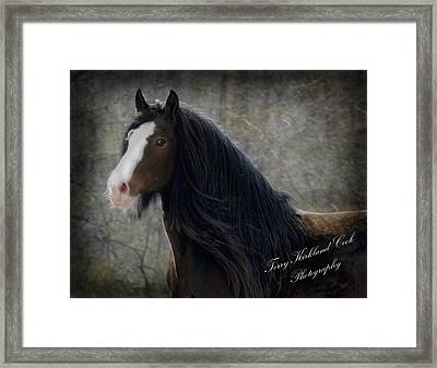 Powerful Paul Framed Print