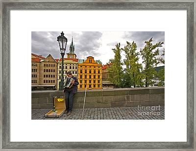 Prague Accordian Player On Charles Bridge Framed Print