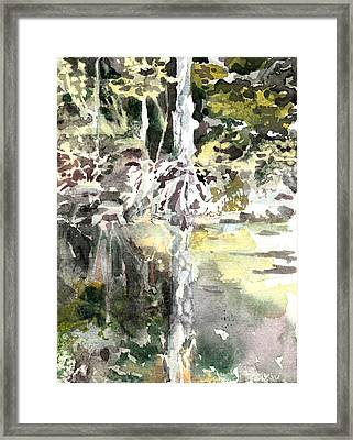 Praire Oaks Framed Print by Mindy Newman