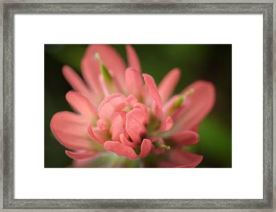 Prairie Fire 2 Framed Print